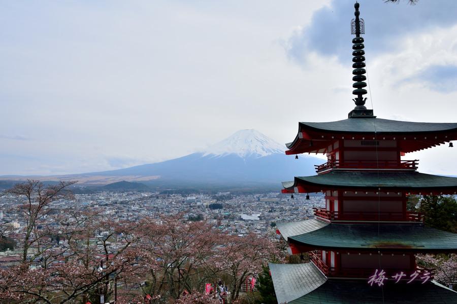 朝倉山2(1)変更済