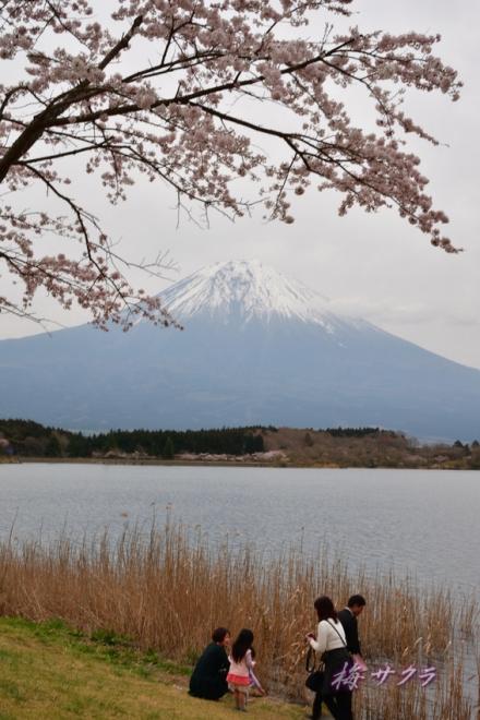 田貫湖2-2変更済