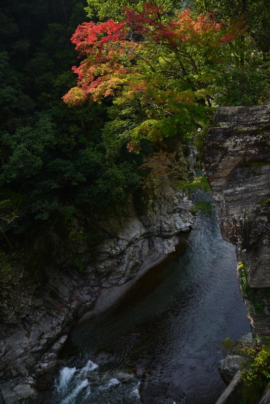 「渓谷に秋の訪れ」