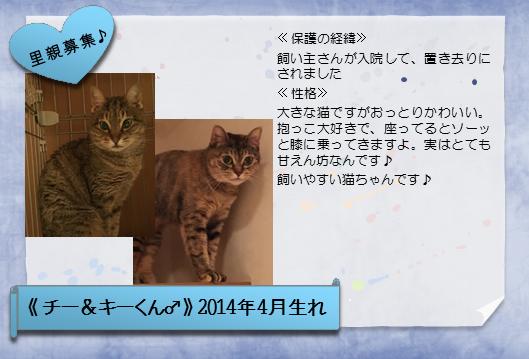 1606chi-ki-.png