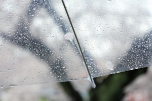ビニール傘の雨粒