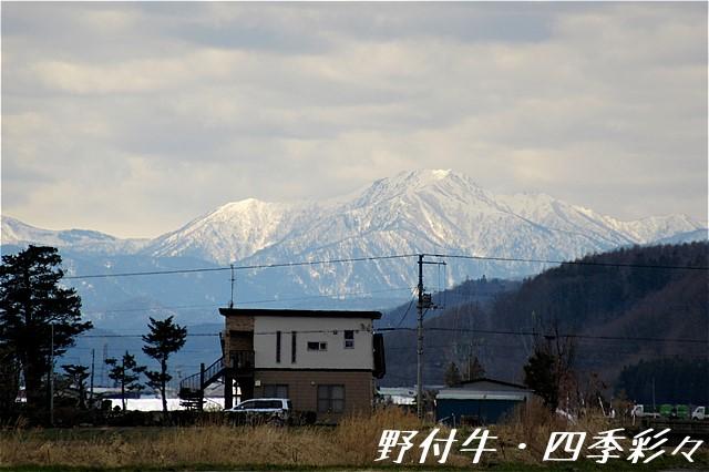 s-IMG_4457.jpg