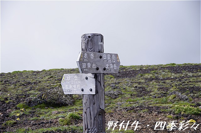 s-P20160804-090329-0.jpg