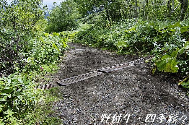 s-P20160831-110500-0.jpg