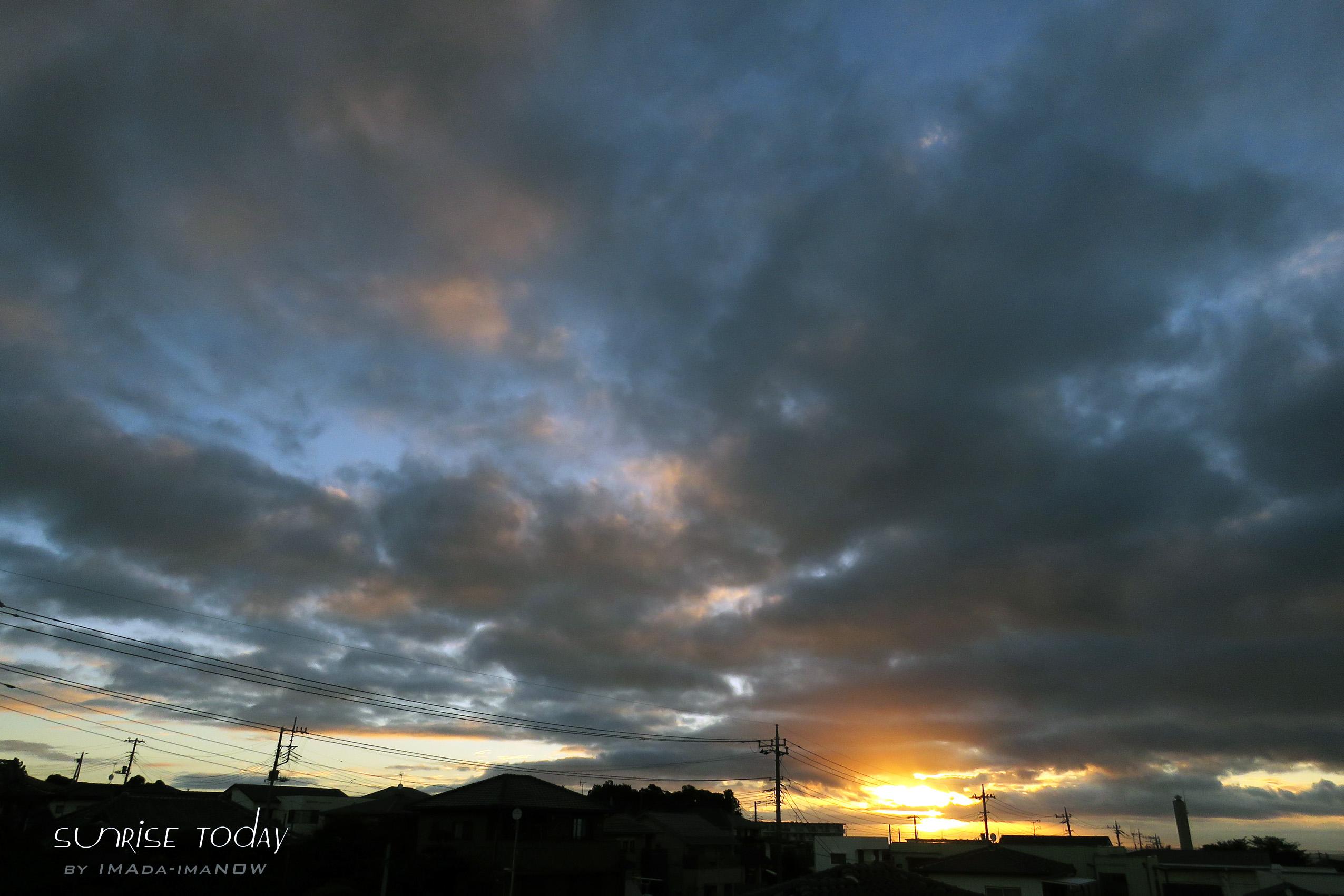 2016_0731-IMG_0253.jpg