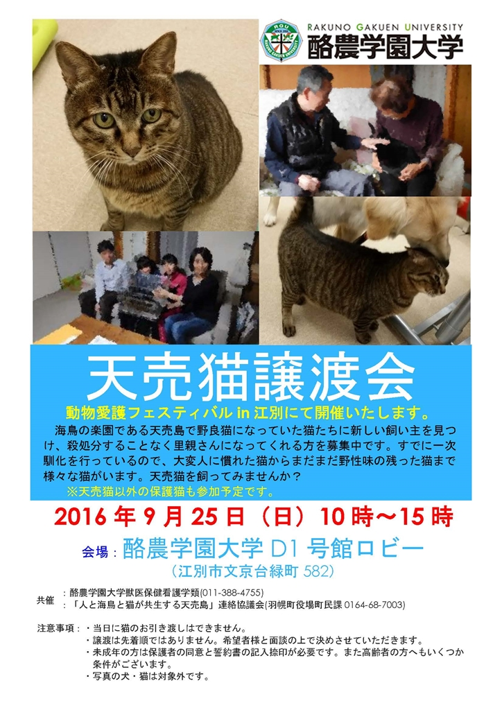 160925天売猫譲渡会チラシ_R