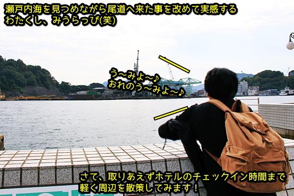 ニャポ旅26 坂の町 尾道 猫