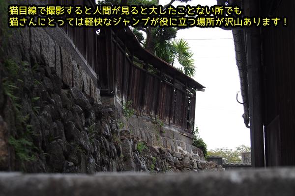 ニャポ旅26 尾道 その2 坂の町散策