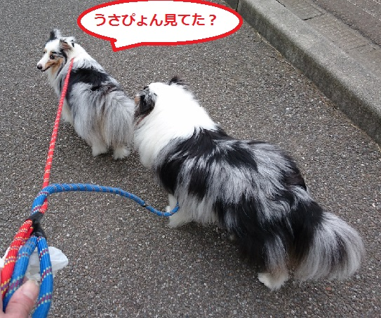 DSC_4576.jpg
