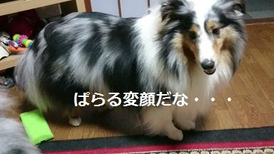 MOV_4961_000022.jpg