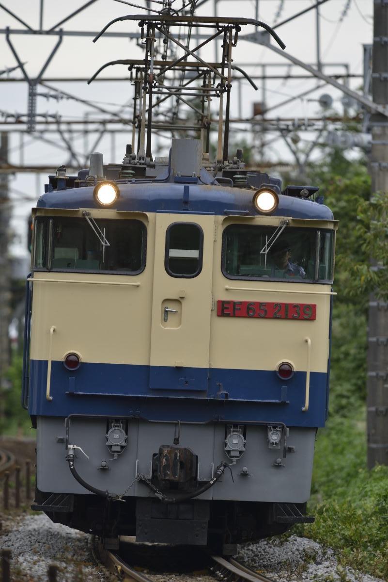 _D8E4885.jpg