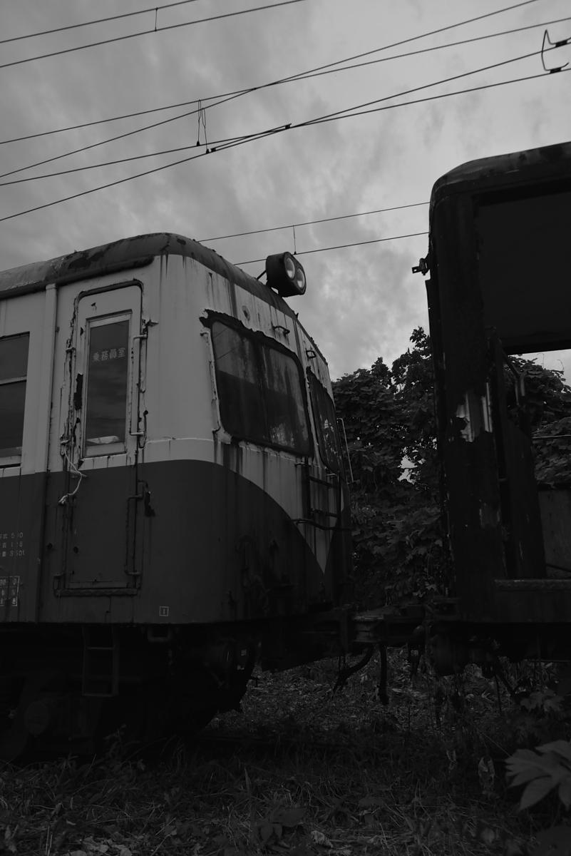 _D8E8599.jpg