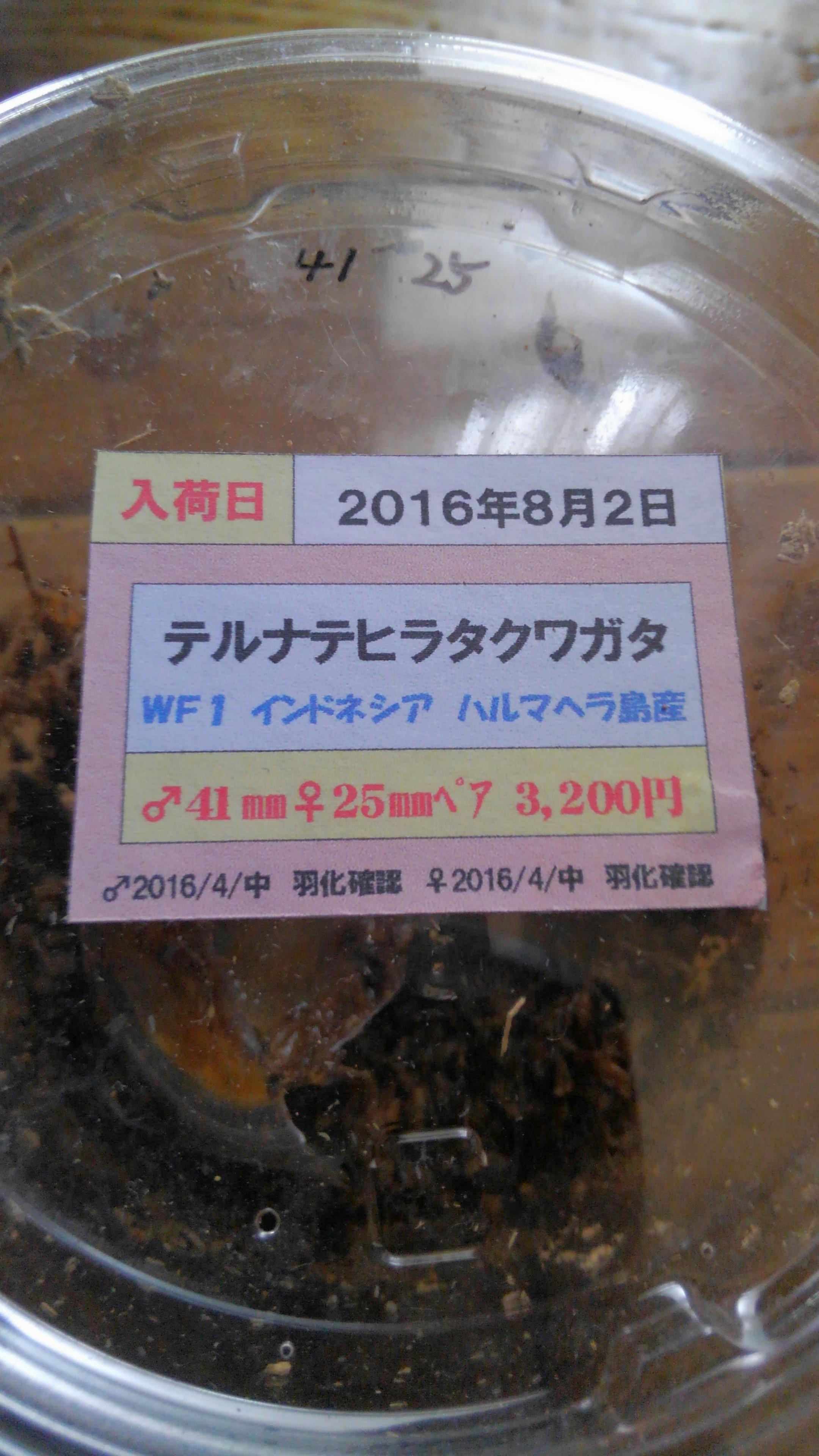 2016091801435079e.jpg