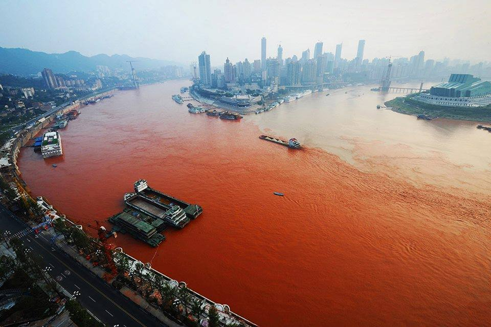 Yangtze River nidokidos group (1)-782004