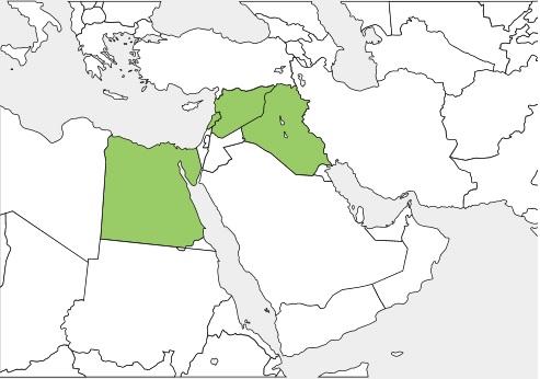シリア レバノン エジプト イラク