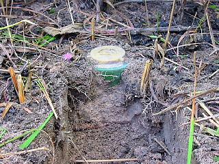 掘り出された地雷