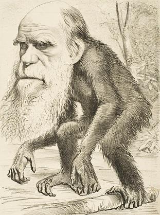 1871年に雑誌の載ったダーウィンを揶揄する風刺画。