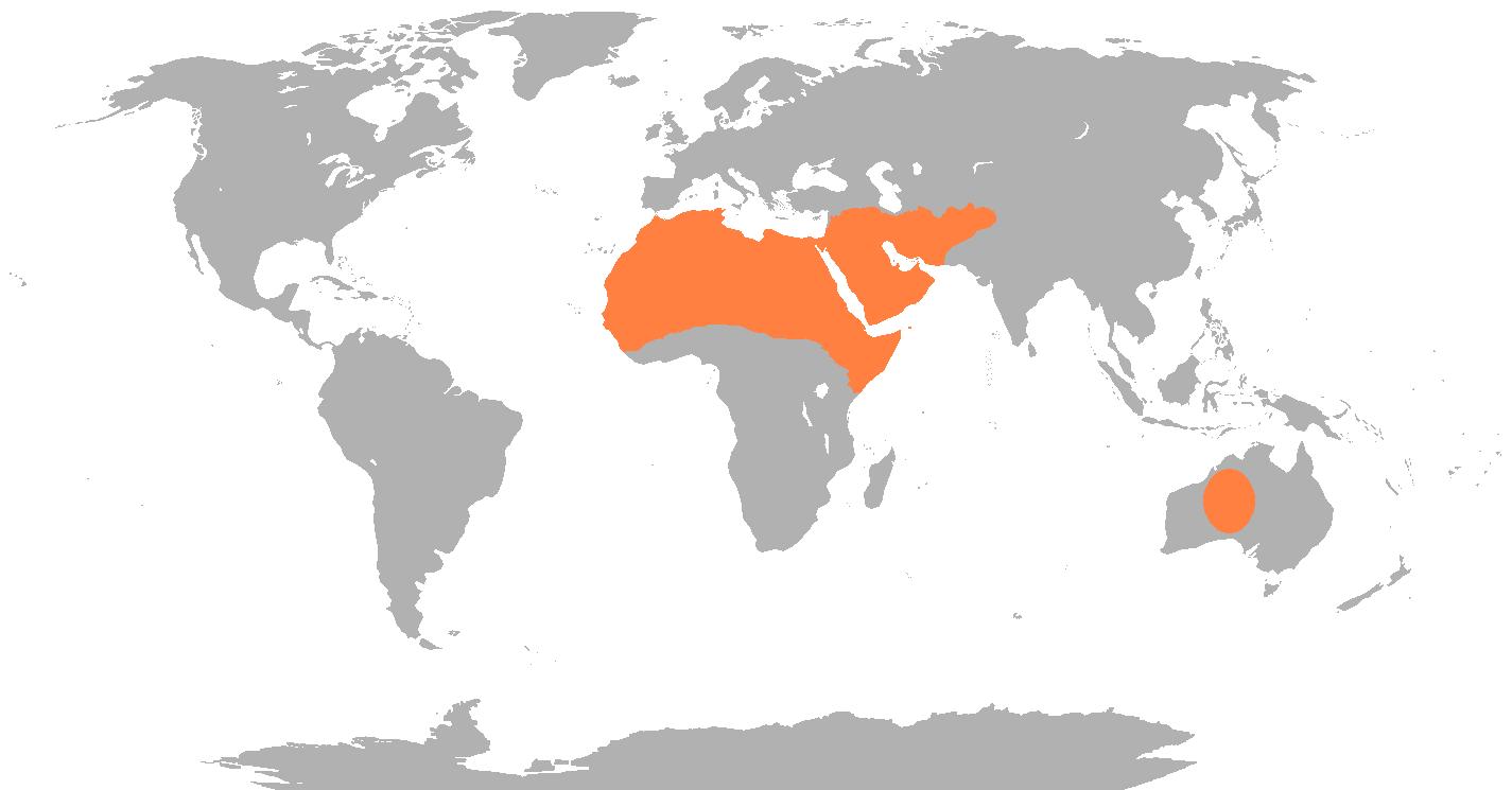 ラクダの生息域
