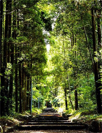 狭野神社 5