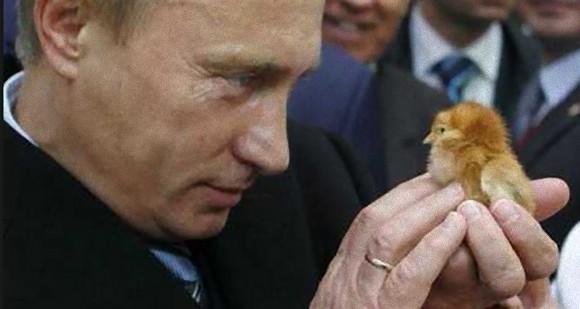 プーチン 13