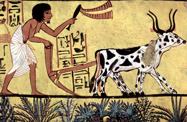 人類最古の農業が行われたところは?