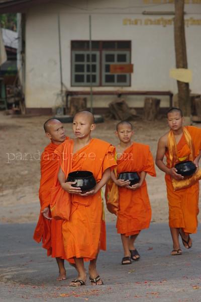 托鉢に出発するタイの僧侶