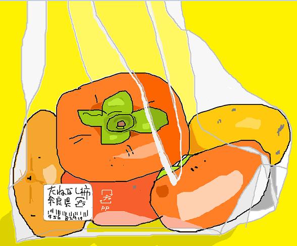 柿 プラグイン用