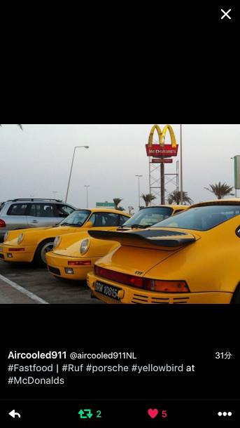 Porschポルシェ930YellowBirds_TW_20160822