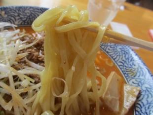 カヌチャ屋 担々麺 麺