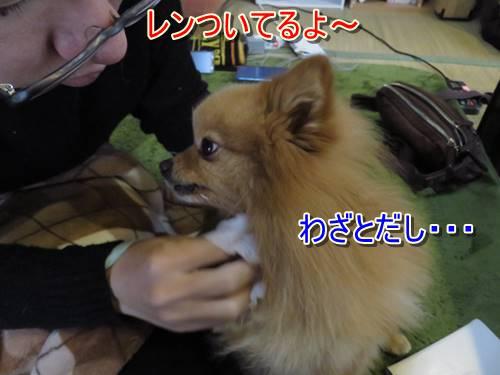 s-IMG_7825_1.jpg