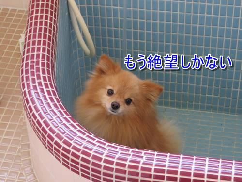 s-IMG_7837.jpg