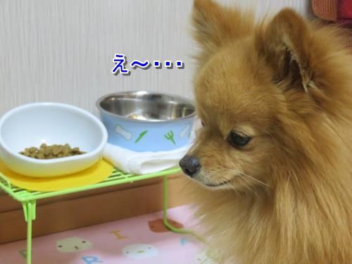 s-IMG_8226.jpg