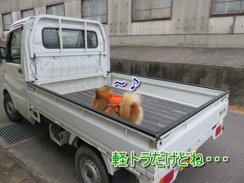 s-IMG_8331.jpg