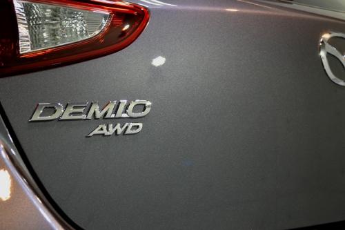 demioA02.jpg