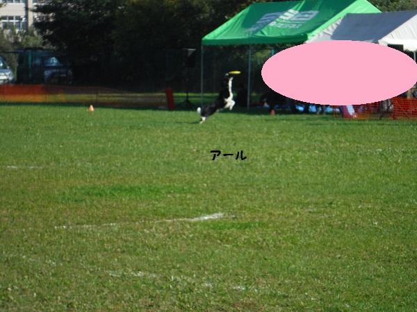 DSCF2186-1.jpg