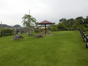船岡山公園3