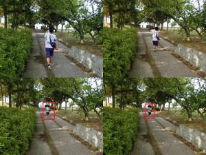 今之浦公園7