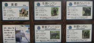 京都動前24