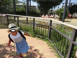 京都動後18