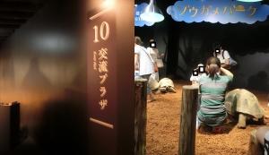 京都水族館20