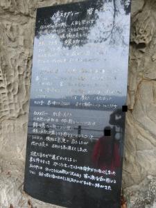 淡島探検10