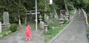 淡島探検12