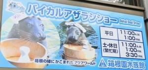 箱根水ショー2