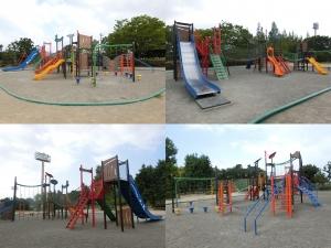 金亀公園6