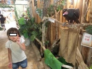 めっちゃジャングル14-1