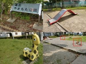 いちょう公園3
