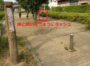 こぶし公園2