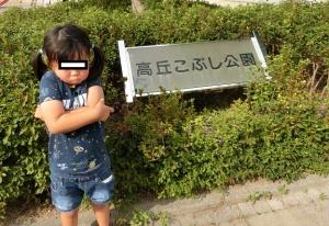 こぶし公園1