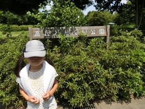 どんぐり公園1