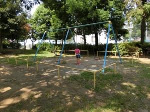 どんぐり公園3